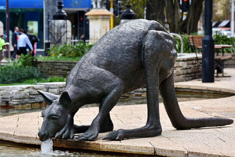 Kangaroo Garden Statues Bronze Animal Sculptures For Sale