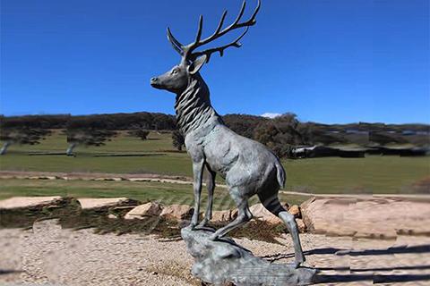 Outdoor Bronze Life Size Modern Statue Art Deer Bronze Animal Sculpture for Sale