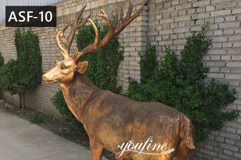 Outdoor Life Size Bronze Deer Garden Statue for Sale ASF-10