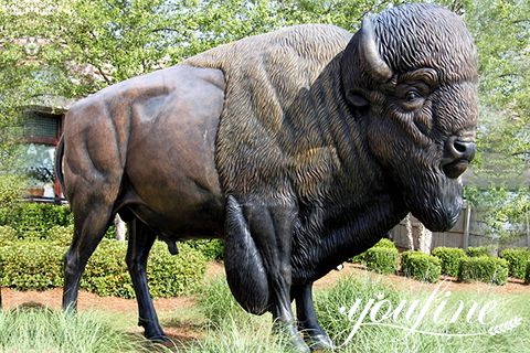Fine Cast Bronze Bison Statue Garden Decor for Sale BOK1-004